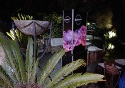 Fotomaton para fotos escondido tras una palmera